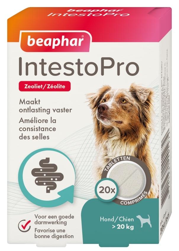 Beaphar Intestro Pro