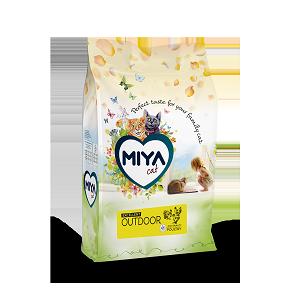 Miya Cat Outdoor
