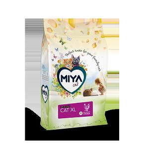 Miya Cat Cat Xl